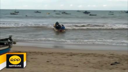 Calentamiento del mar ahuyenta y afecta a especies marinas en Tumbes