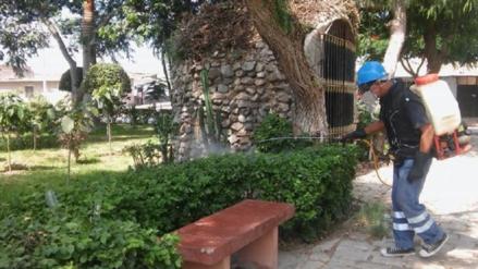 Fumigan calles y parque de la ciudad de Lambayeque