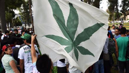 El Ejecutivo presentó proyecto de ley para legalizar la marihuana con fines medicinales