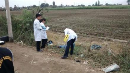 Agricultores hallan cuerpo descuartizado en una maleta