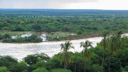 Piura: recuperan cuerpo de agricultor tras caer al río en Chulucanas