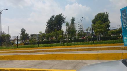 Destinan presupuesto para beneficiar a microempresarios de Miraflores