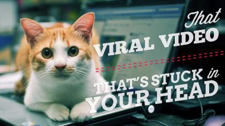 ¿Qué hace que una noticia se vuelva viral? La neurociencia te lo explica