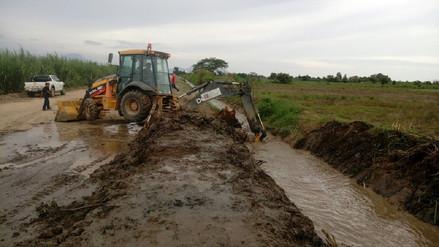 Cultivos dañados por desborde del río Moche