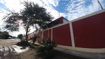 Poste de luz cayó sobre institución educativa del distrito de Picsi