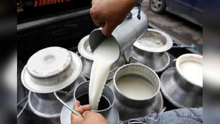 Empresas acopiadoras no recibirán leche de Cajamarca por lluvias