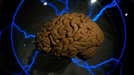 Un gen explica por qué el cerebro de algunos envejece más rápido