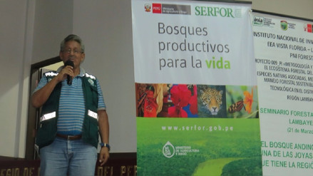 Anuncian proyecto para recuperar bosques destruidos por incendios