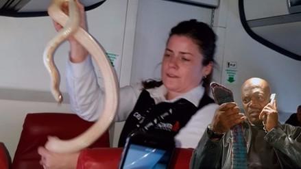 La fuga de una serpiente causó pánico en un vuelo en Alaska