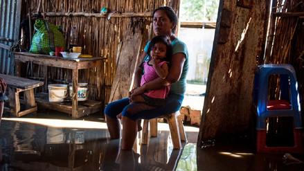 ¿Qué es el seguro agrario y cómo ayuda a los agricultores ante un desastre natural?