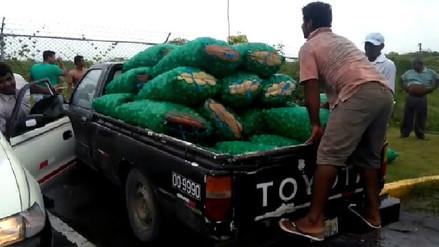 Trasladan 25 toneladas de limón a través de vuelos cívicos