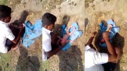 Una recién nacida fue enterrada viva cerca de un basural de la India