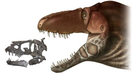 El tiranosaurio tenía una cara escamosa, similar a la del cocodrilo