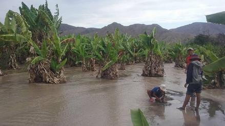 Desborde de quebrada Tioyacu dejó doce viviendas inundadas en Saposoa