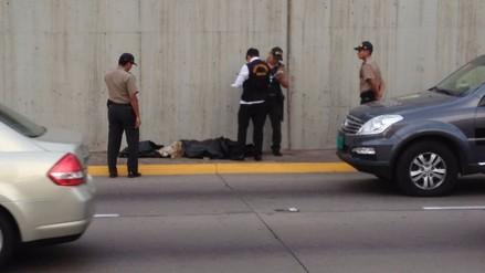 Un hombre falleció tras dormirse y caer a la Vía Expresa
