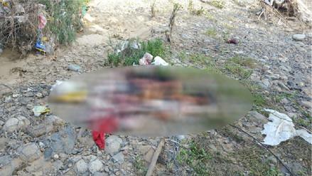 Arrojan bolsa con órganos humanos a quebrada de Jayanca