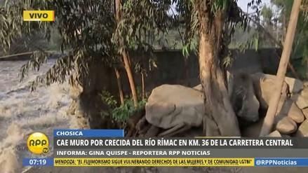 Un muro de contención cayó en Chosica por la fuerza del río Rímac