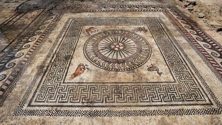 Fotos | Descubren complejos mosaicos en ciudad romana perdida