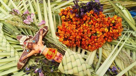 Huancayo: comerciantes de palmas listos para inicio de Semana Santa