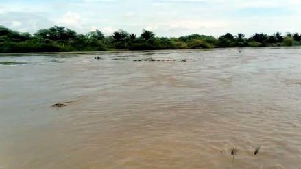 Se incrementó caudal del río Tumbes tras fuertes lluvias