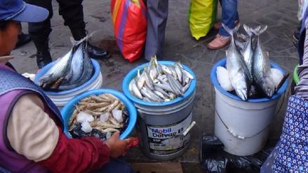 Arequipa: constatan deficiencias en venta de productos hidrobiológicos en Miraflores