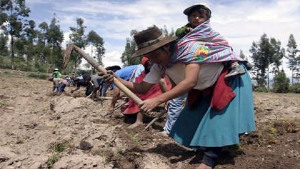 Ejecutivo envió al Congreso proyecto para condonar deudas de agricultores