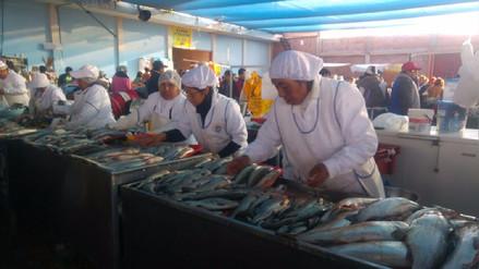 Hasta en 70% se incrementó el precio del pescado por Semana Santa