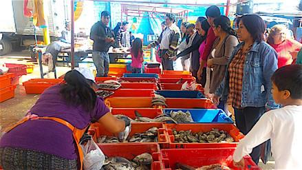 Mercados y terminales mantienen precio de pescados por Semana Santa