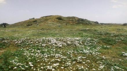 Recorren sitios arqueológicos ante posibles huaqueos por Semana Santa