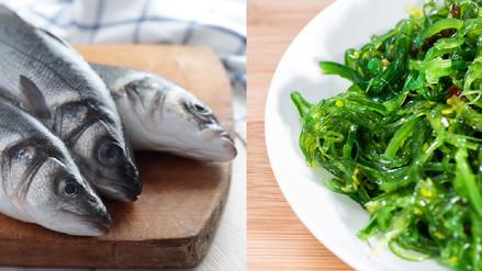 El pescado y las algas, dos riquezas marinas con enorme poder