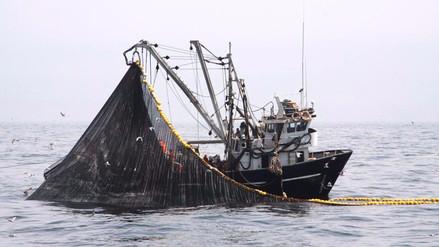 Produce fijará esta semana cuota para la primera temporada de pesca