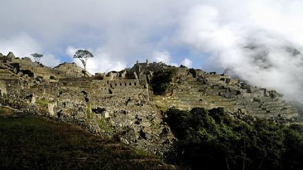Emufec lanzará la próxima semana el Inti Raymi 2017 en Machu Picchu