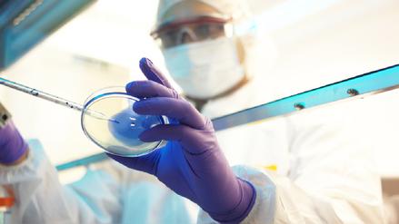 Fiebre mayaro y oropouche pueden confundirse con el dengue