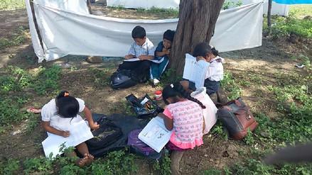 Niños damnificados reciben clases bajo los árboles