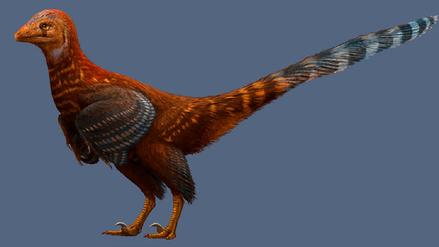 Descubren en China el fósil de una nueva especie de dinosaurio con plumas