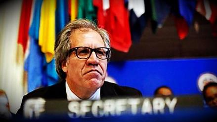 Secretario de la OEA: