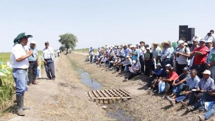 Productores de arroz de Lambayeque y La Libertad fueron capacitados por el INIA
