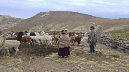 Familias de Jantucachi soportan temperaturas de -10 grados