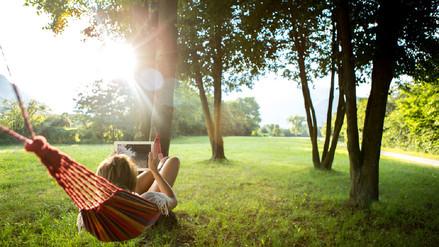 Por qué poner más verde tu ciudad es calidad de vida