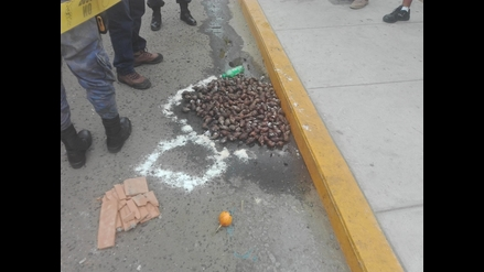 Hallan 180 caracoles en la vía pública de Chimbote