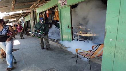 Suspenden acciones contra el dengue en la provincia de Pisco