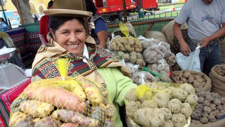 Minagri: Perú se consolidó como primer productor de papa en la región