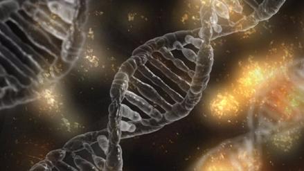 Descubiertos 40 nuevos genes relacionados con la inteligencia