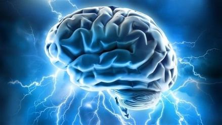 Tu cerebro es capaz de prever el futuro (y de salvarte la vida)