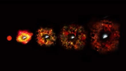 Por primera vez, astrónomos ven una estrella convertirse en un agujero negro