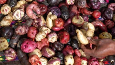 Consumir papa con cáscara aporta fibra a nuestra dieta diaria