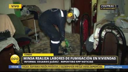 El Minsa fumiga casas en Lima Norte ante nuevos casos de zika
