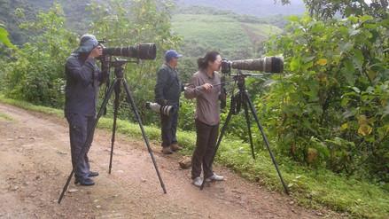 Perú tiene en el norte la ruta más rica de aves del mundo
