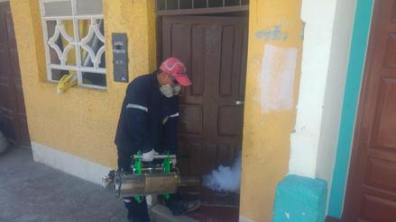 Nuevo Chimbote: piden fumigación en colegios por plaga de zancudos
