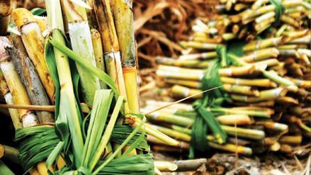 ¿Cuánta azúcar se produce en el norte y se importa al Perú?